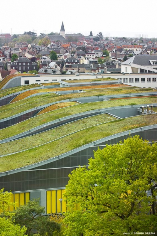 top green roof