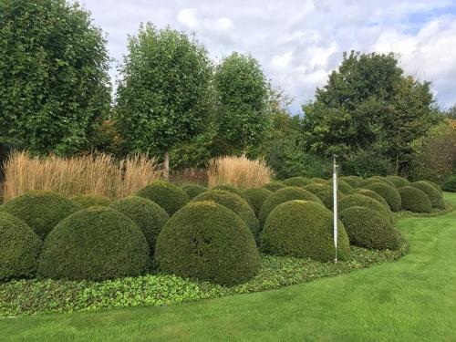 balls in garden neoturf