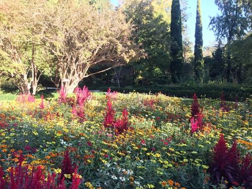 madrid garden neoturf