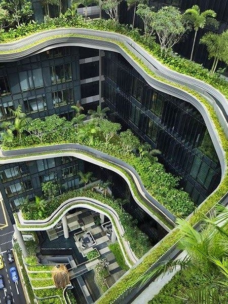green roof hotel